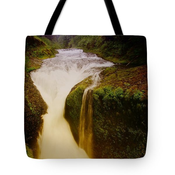Twister Falls Tote Bag by Jeff Swan