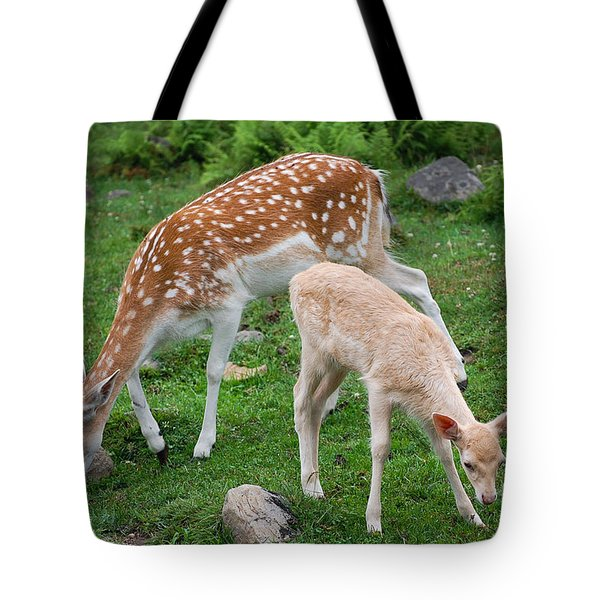 Tote Bag featuring the photograph Two Babes by Bianca Nadeau