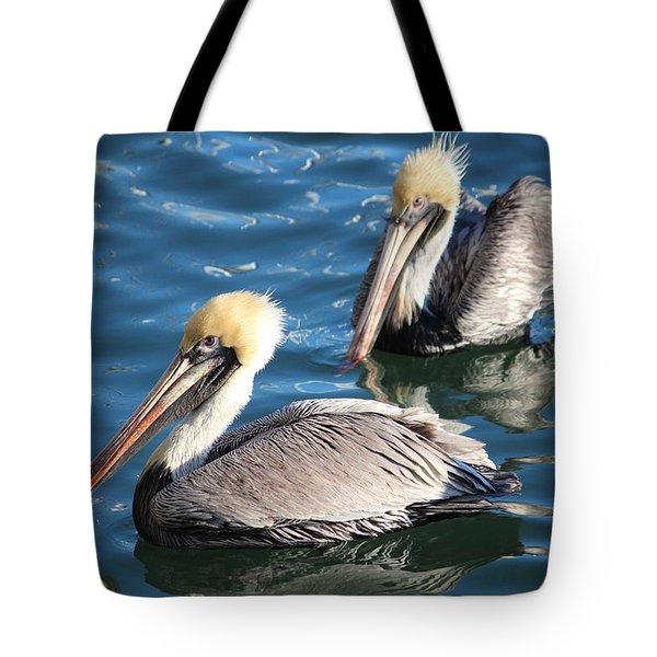 Two Beautiful Pelicans Tote Bag by Cynthia Guinn