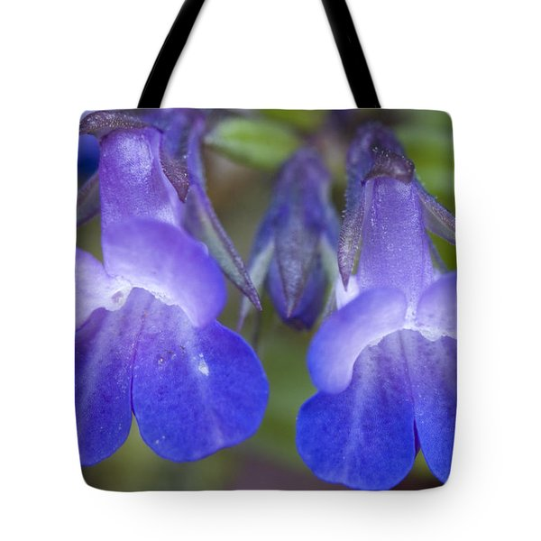 Tote Bag featuring the photograph Two Blue by Sonya Lang