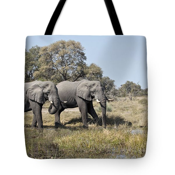 Two Bull African Elephants - Okavango Delta Tote Bag