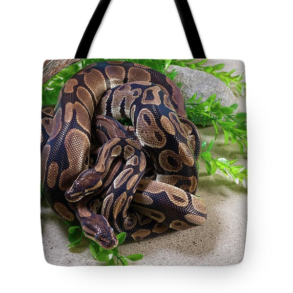 Two Burmese Pythons Python Bivittatus Tote Bag