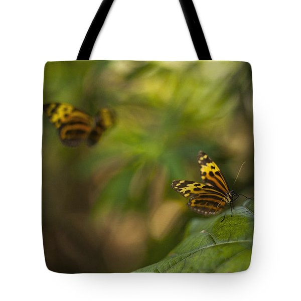 Two Butterflies Tote Bag by Bradley R Youngberg