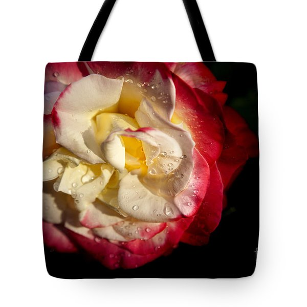Tote Bag featuring the photograph Two Color Rose by David Millenheft