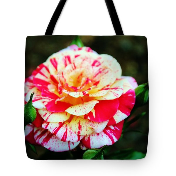 Two Colored Rose Tote Bag by Cynthia Guinn