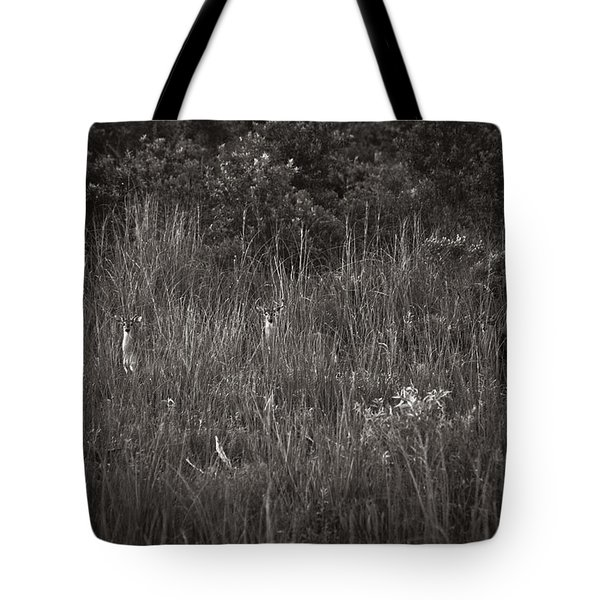 Two Deer Hiding Tote Bag by Bradley R Youngberg