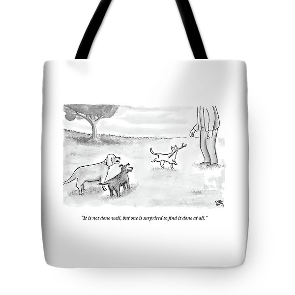 Two Dogs Criticize A Cat Who Has Just Retrieved Tote Bag