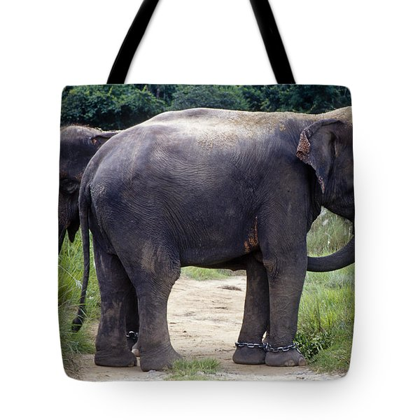 Two Elephants Tote Bag
