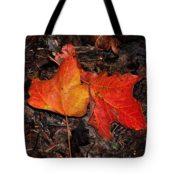 Two Fallen Autumn Leaves Tote Bag