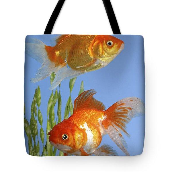 Two Fish Fs101 Tote Bag by Greg Cuddiford