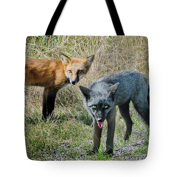 Two Fox Seattle Tote Bag