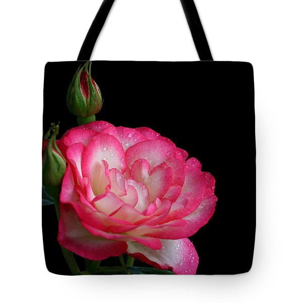 Tote Bag featuring the photograph Buddies by Doug Norkum
