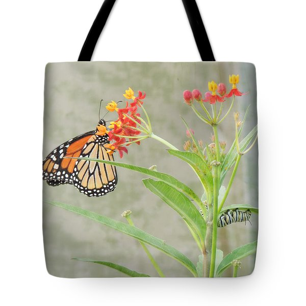 Two Generations Tote Bag