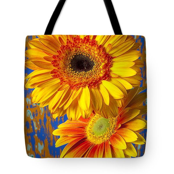 Two Golden Mums Tote Bag by Garry Gay