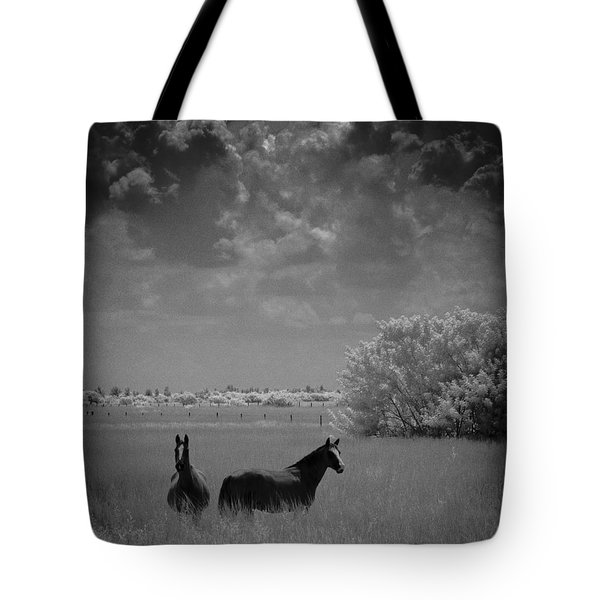 Two Horses Tote Bag by Bradley R Youngberg