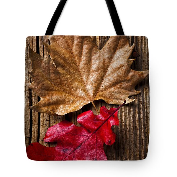 Two Leafs  Tote Bag by Garry Gay