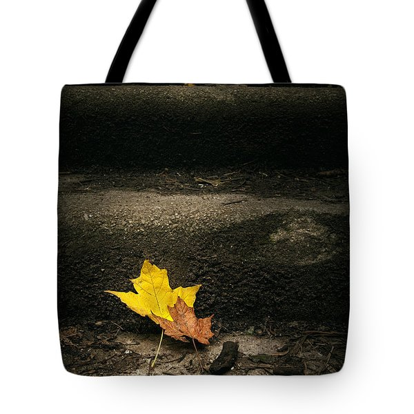 Two Leaves On A Staircase Tote Bag