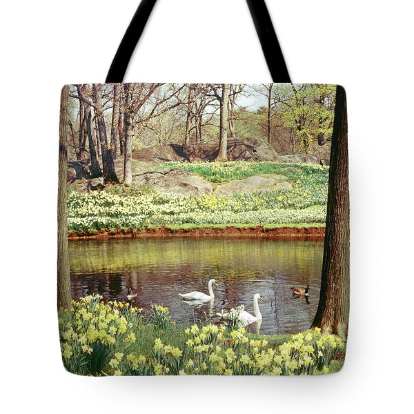 Two Mute Swans And Several Canada Geese Tote Bag