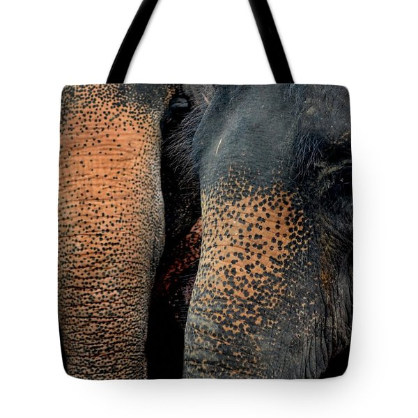 Tote Bag featuring the photograph Two Pals by Michelle Meenawong
