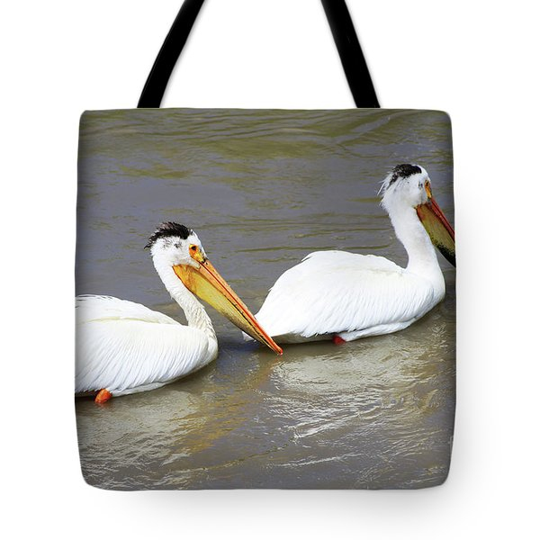 Tote Bag featuring the photograph Two Pelicans by Alyce Taylor
