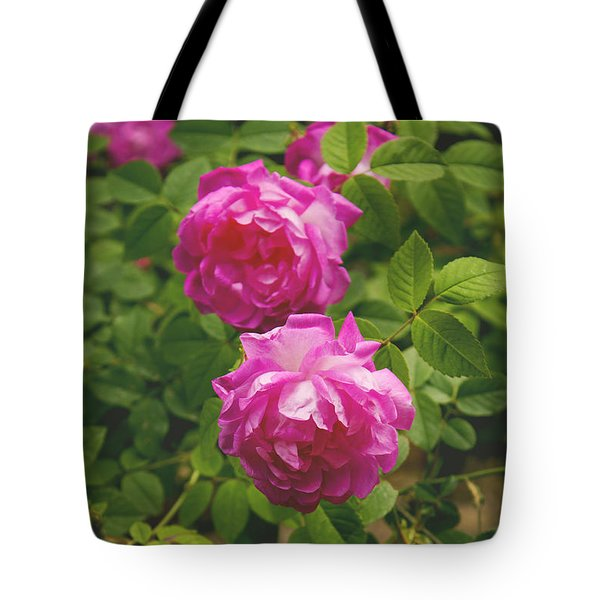 Two Roses Tote Bag by Lena Auxier