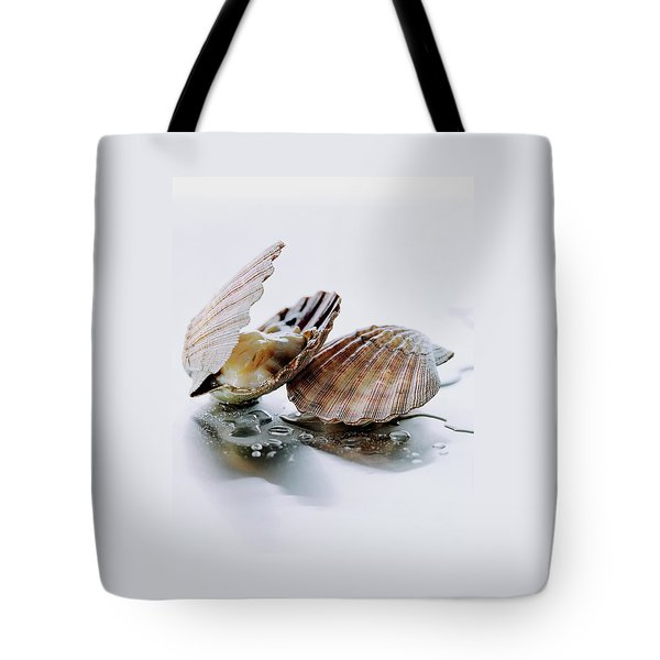 Two Scallops Tote Bag