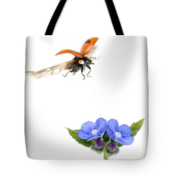 Two Spot Ladybug Tote Bag by Mark Bowler