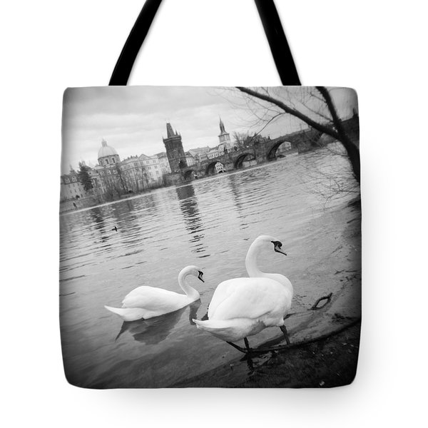 Two Swans In A River, Vltava River Tote Bag