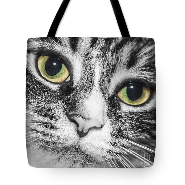Two Toned Cat Eyes Tote Bag