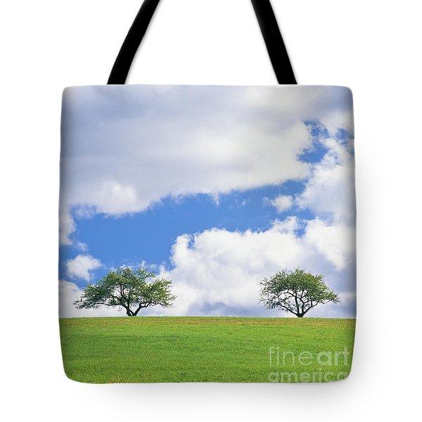 Tote Bag featuring the photograph Two Trees by Alan L Graham