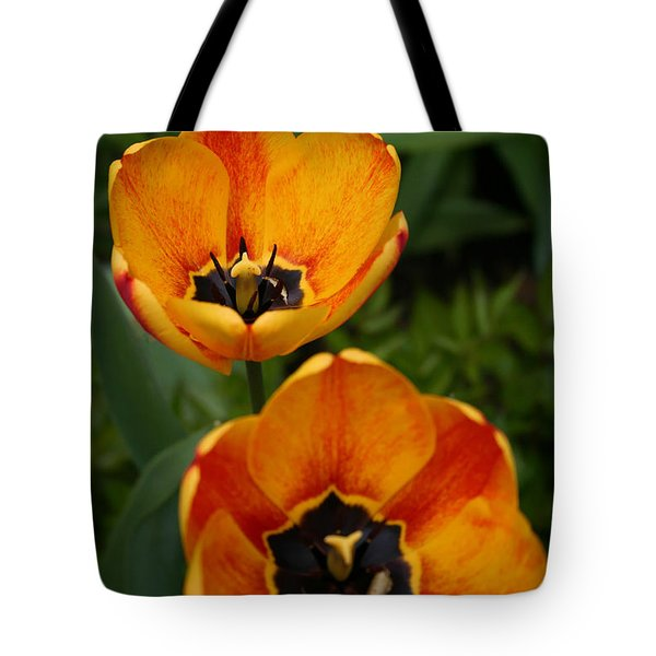 Two Tulips Tote Bag by Denyse Duhaime