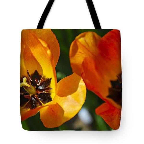 Two Tulips Tote Bag by Elena Elisseeva