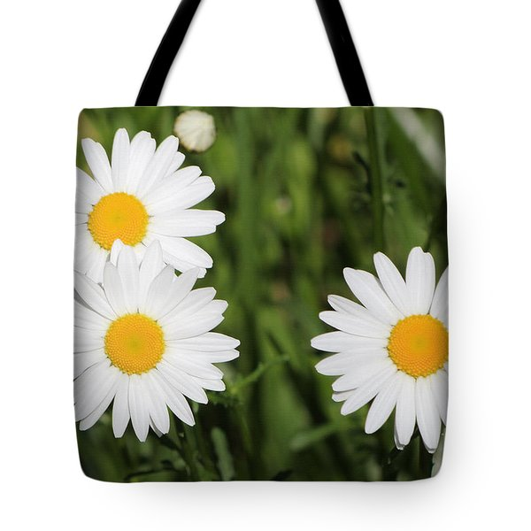 Tote Bag featuring the photograph Two Up One Across by Anita Oakley