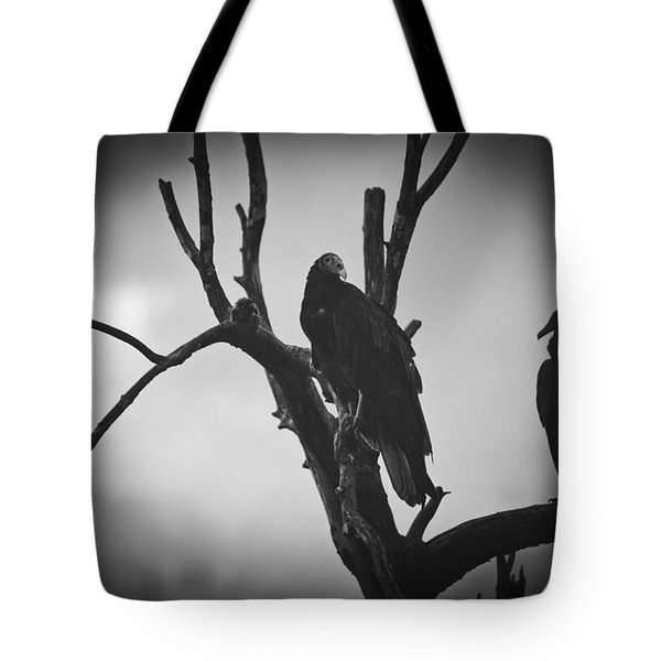 Two Vultures Tote Bag by Bradley R Youngberg