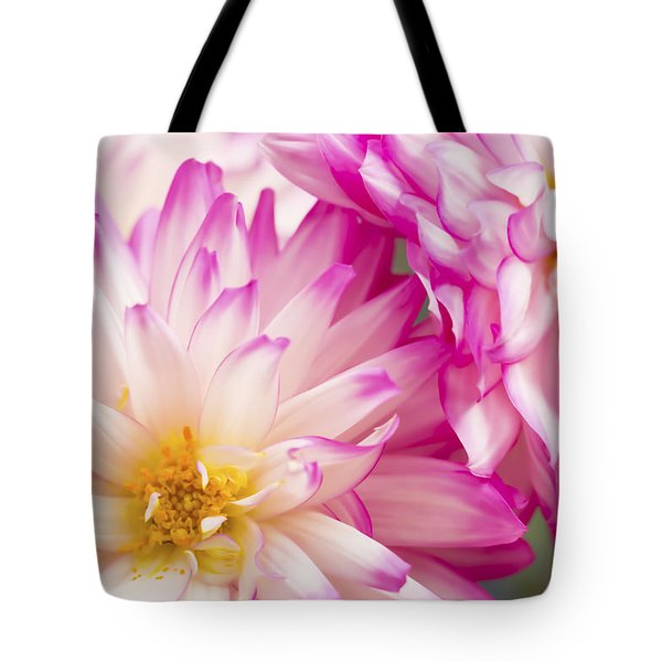 Two White And Pink Decorative Dahlias Tote Bag by Daphne Sampson