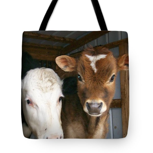Tote Bag featuring the photograph Two's Company by Sara  Raber