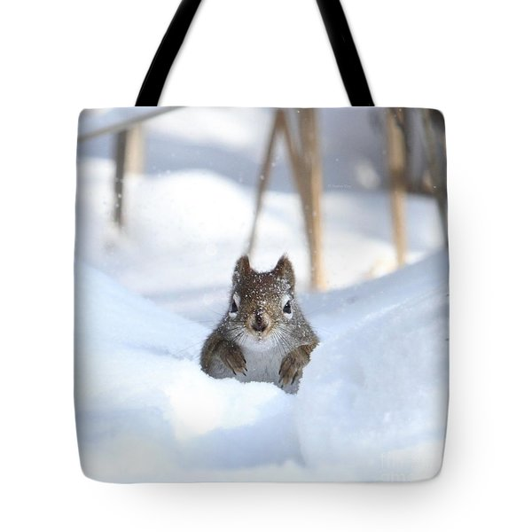 Is Winter Over Yet Tote Bag by Heather King