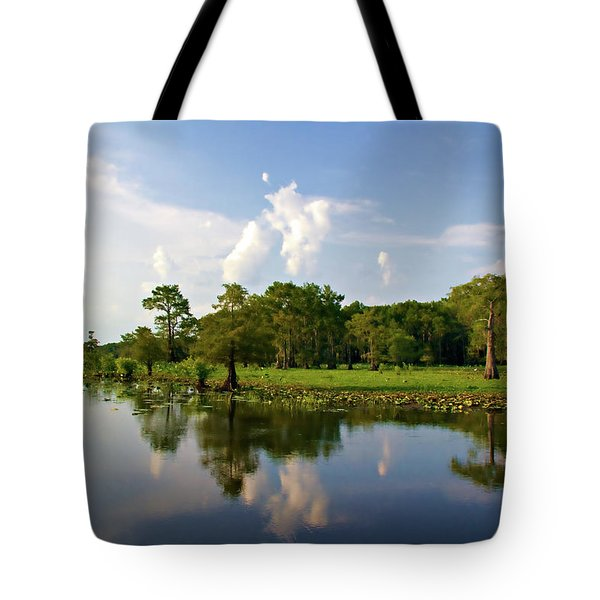 Uncertain Reflection Tote Bag