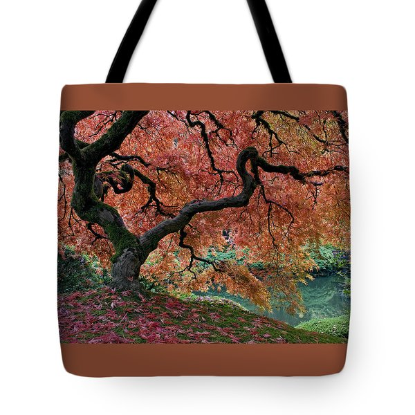 Under Fall's Cover Tote Bag by Wes and Dotty Weber