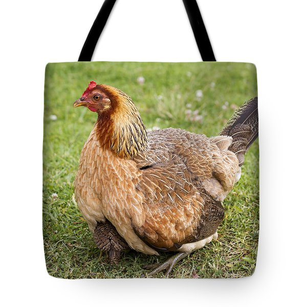Under Mom's Wing Tote Bag by Mike  Dawson