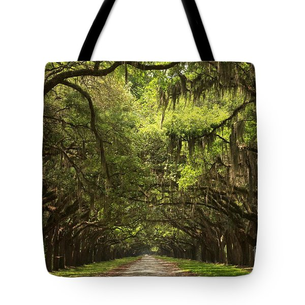 Under The Ancient Oaks Tote Bag