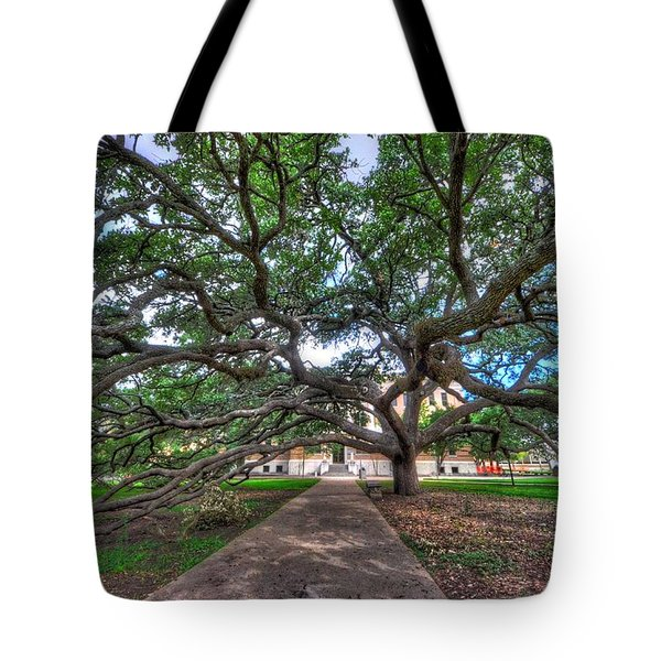 Under The Century Tree Tote Bag