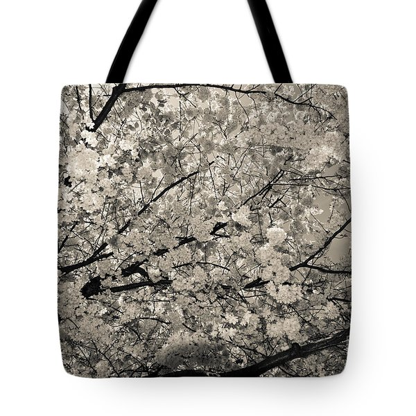 Under The Cherry Tree - Bw Tote Bag by Hannes Cmarits