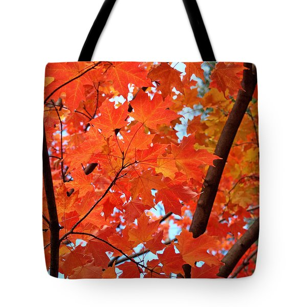 Under The Orange Maple Tree Tote Bag by Rona Black