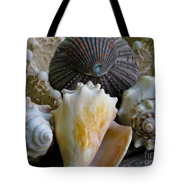 Under The Sea Tote Bag by Colleen Kammerer