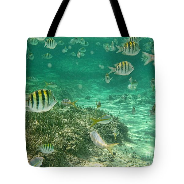 Under The Sea Tote Bag by Peggy Hughes