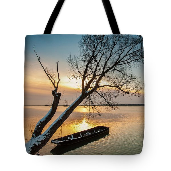 Under The Tree Tote Bag by Davorin Mance