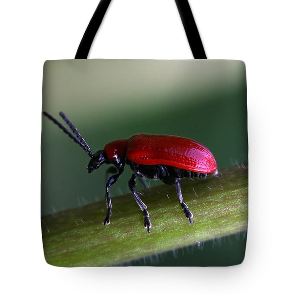 Tote Bag featuring the photograph Under Way by Annie Snel