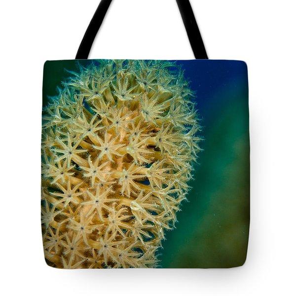 Underwater Gorgonian Tote Bag by Jean Noren