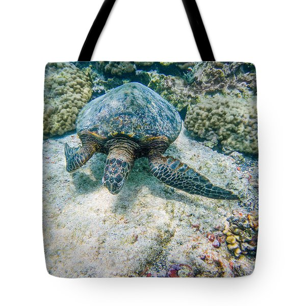 Swimming Turtle Tote Bag by Denise Bird